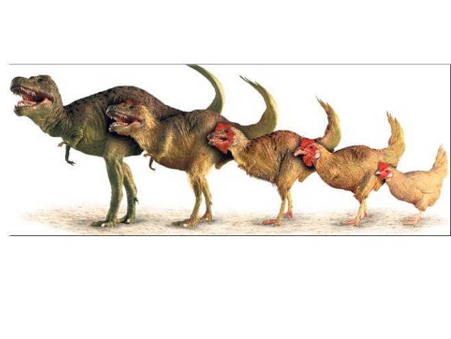 Jagodići I Dinosaurusi