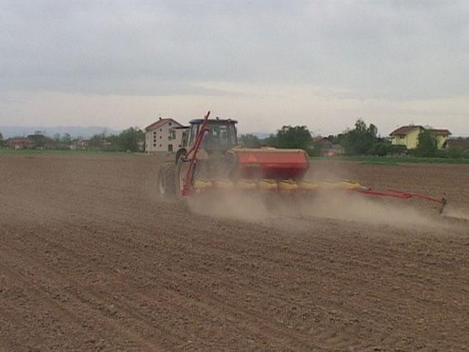 Poljoprivreda - Foto: RTRS
