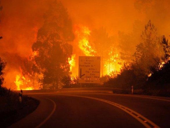 Požar u Portugalu  (Foto:FaH) -