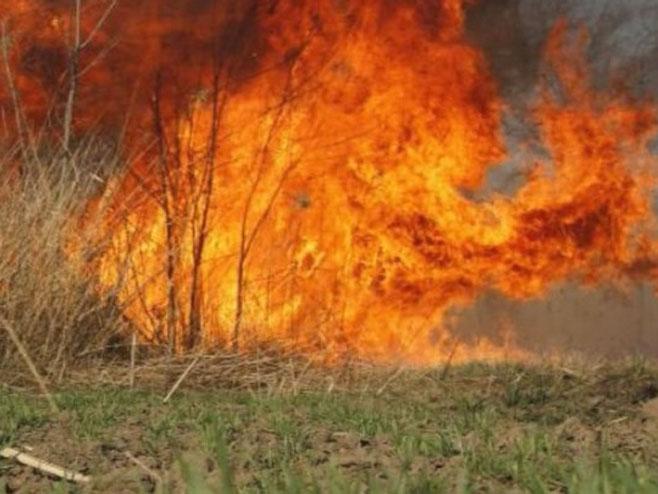 Požar - Foto: RTRS