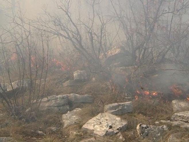 Požari u Gacku - Foto: RTRS