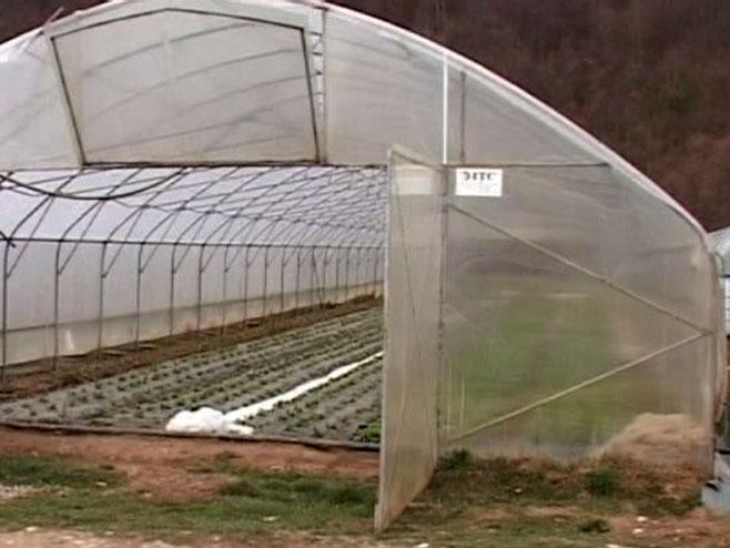 Rezultat slika za Bratunac: 20 plastenika za poljoprivrednike