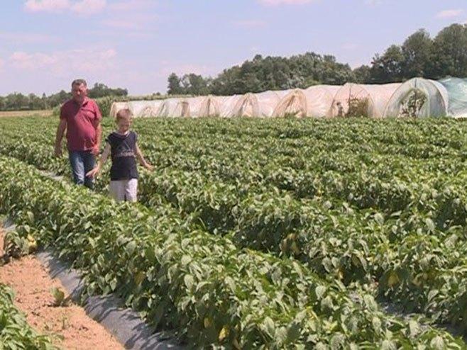 Udruženje poljoprivrednika - Foto: RTRS