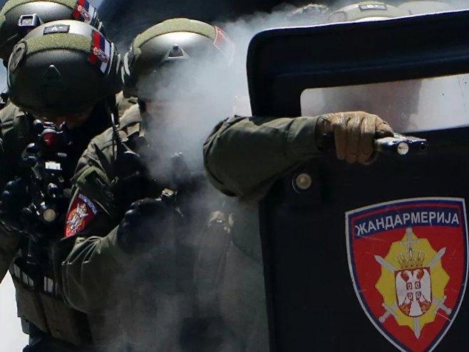 Srbija - Žandarmerija  (Foto:Tanjug / Jaroslav Pap) -