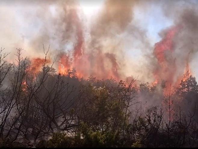 Trebinje - požar (Foto: trebinjelive.info) -
