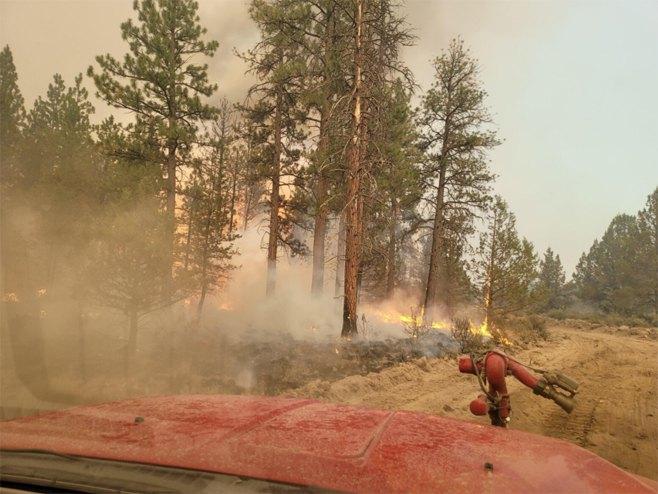 Požari u Americi (foto:Oregon State Fire Marshals Office -