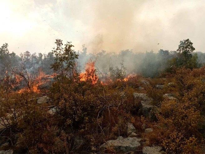 Požar u Bileći (Foto: radio_bileca) - Foto: Instagram